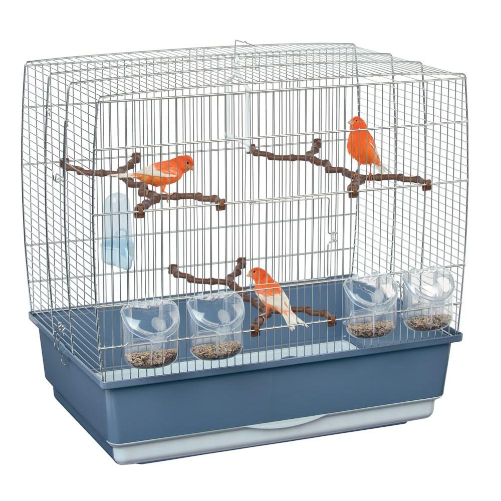 Le gabbie dei canarini