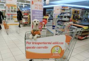 Il supermercato apre ai cagnolini
