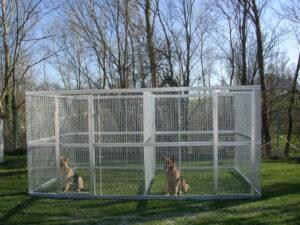 Cose da sapere sulle recinzioni per cani